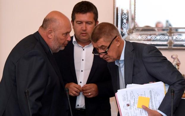 Ministr zemědělství Miroslav Toman, ministr vnitra Jan Hamáček a premiér Andrej Babiš  (ČTK)
