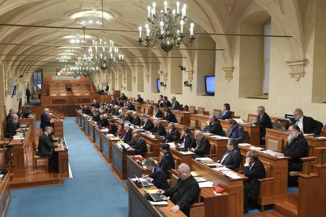 Jednání pléna Senátu Parlamentu ČR (ČTK)