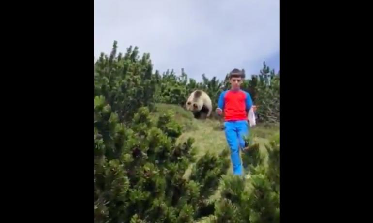 Chlapec s chladnou hlavou unikl medvědovi. (Twitter/@loriscalliari)