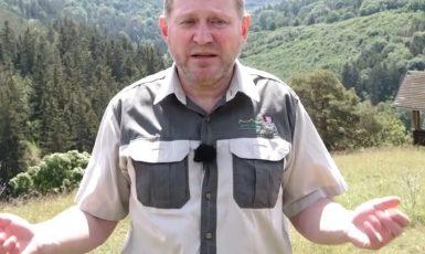 """Ředitel Lesní správy Lány Balák: """"Mně nyní nezbývá nic jiného než natočit tohle video, abych ukázal lidem pravdu.""""  (repro youtube.com)"""