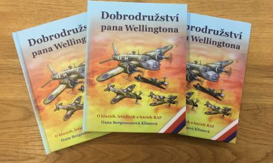 Kniha Dobrodružství pana Wellingtona (FORUM 24)