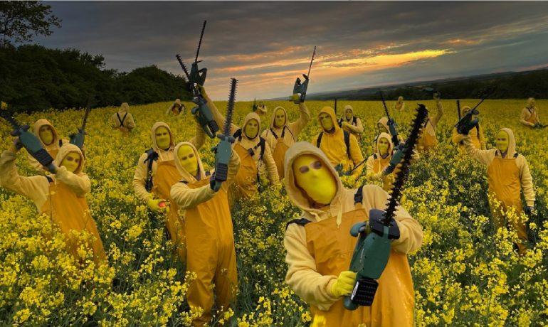 Akce skupiny Ztohoven v řepkovém poli Agrofertu. (Facebook/Ztohoven)