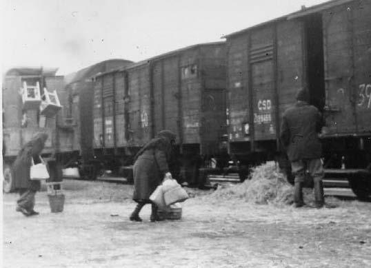 Maďaři přesídlení z města Gúta (dnes Kolárovo) na nádraží v Mladé Boleslavi (1947) (wikimedia / National Archives of Hungary Budapest)